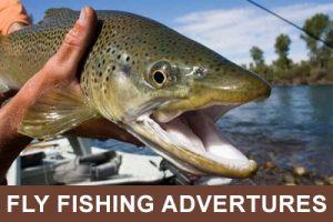 Fly Fishing Adventures - Guided Fly Fishing Trips