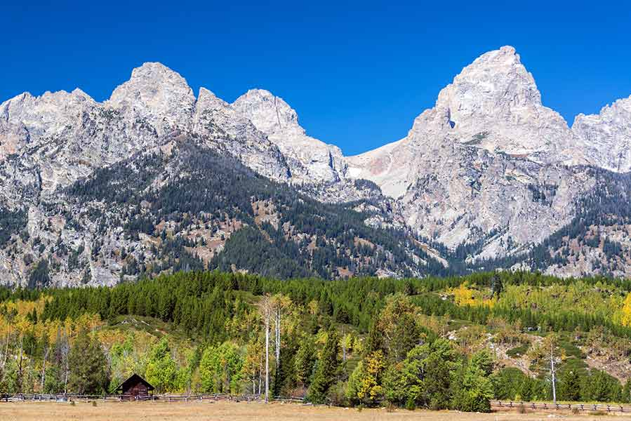 Jackson Hole Restaurants and Hotels