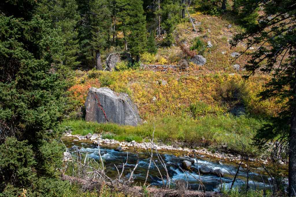 Fall Colors - Idaho Hiking