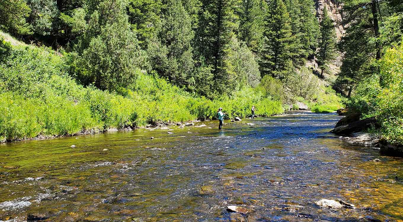 Fishing and Hiking Idaho Creeks