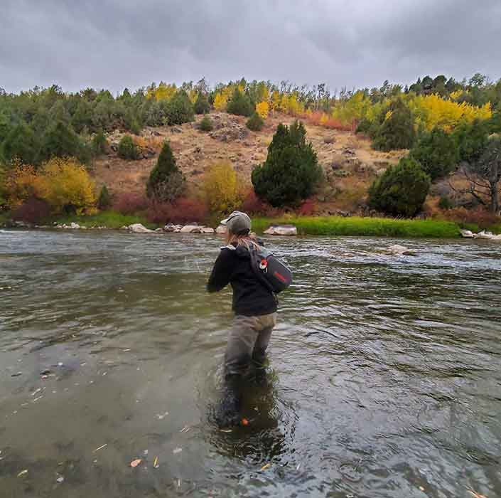 Teton River Fishing