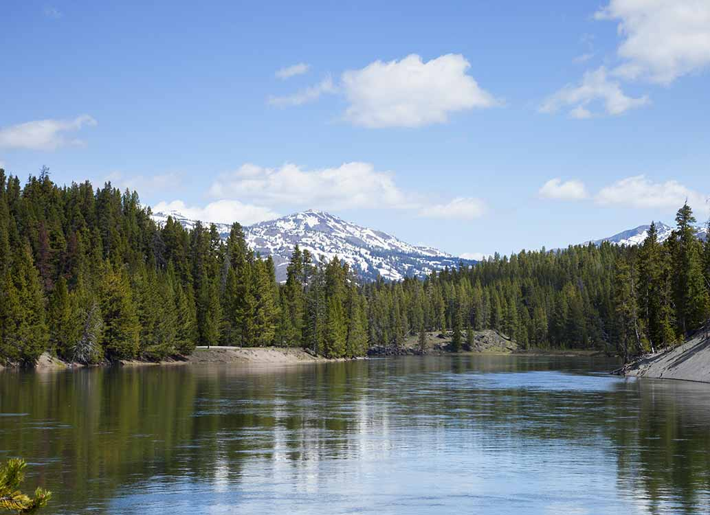 Jedediah Smith Wilderness Yellowstone